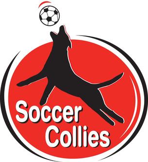 Soccer Collies