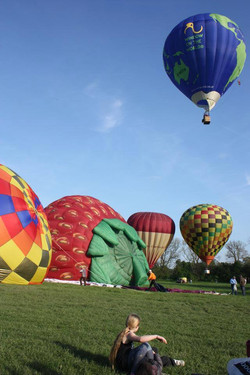 Balloons in the field.jpg