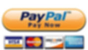 paypal button.jpg
