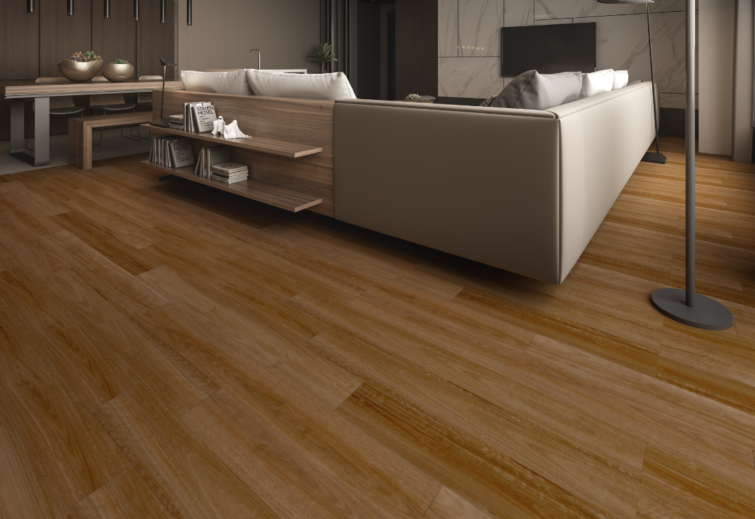 HYB-91207 Pacific Spotted Gum