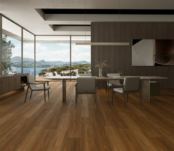 HYB-55104 Classic Spotted Gum