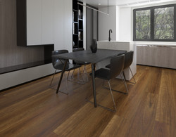 HYB-77101 Spotted Gum