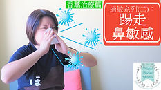 踢走鼻敏感 cover snapshot.jpg