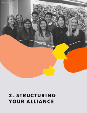 2. Structuring Your Alliance