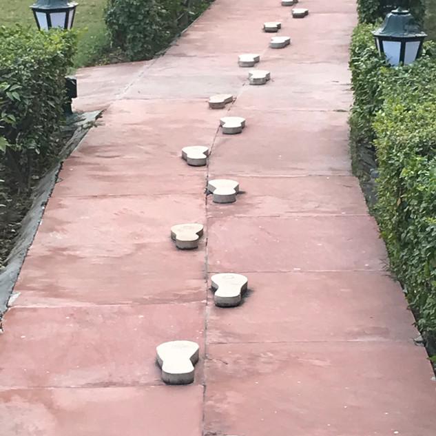 Pathway of Ghandi's final footsteps