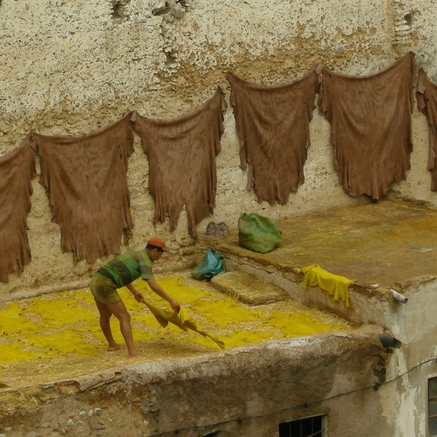 Exploring the tanneries in Fes