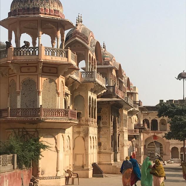 Monkey Temple near Jaipur, India