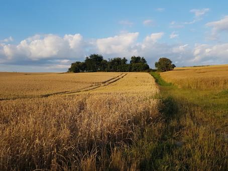 Schutz der kleingliedrigen Landschaft