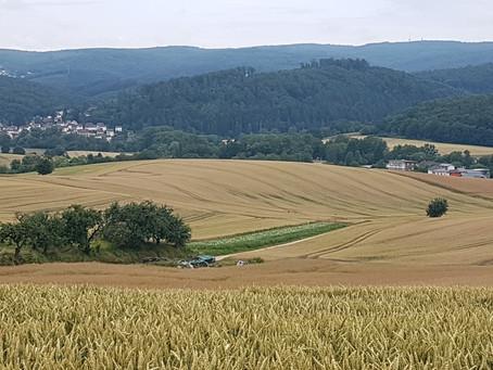 """Einwohnerversammlung """"Wiesenbacher Landschaftskonzept - wie, was, wann, wo??"""""""