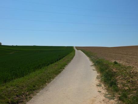 Wegegrundstücke für den Naturschutz nutzen