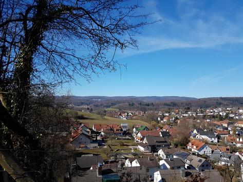 Erstes Wiesenbacher Wohngebiet wird vor direktem Ackergift geschützt