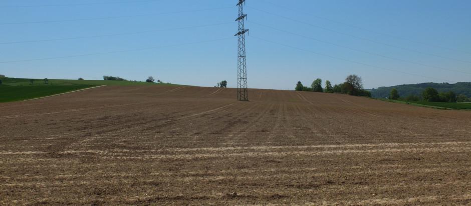Schutz der Böden in Wiesenbach und Langenzell