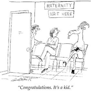 Obstetrics Speciality Career Cartoon