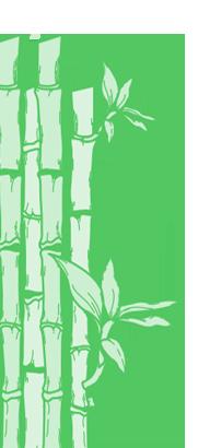 templates bamboo 1.png