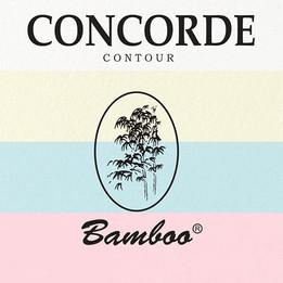 CONCORDE CARTON