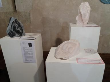 expo JEMA Naronne 2018