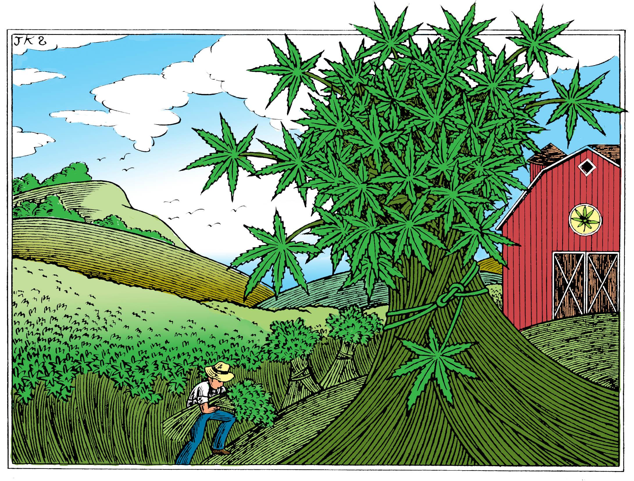 Legalizing Weed