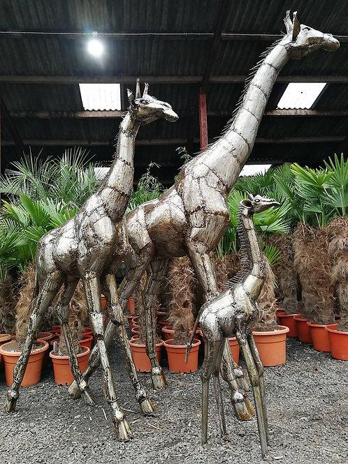 Large Giraffe Sculpture in metal