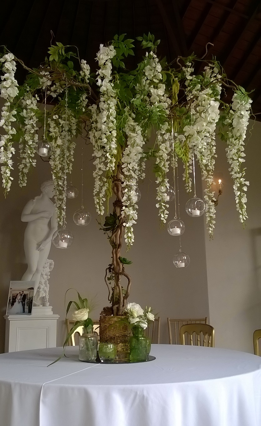 Hanging Wisteria Tree