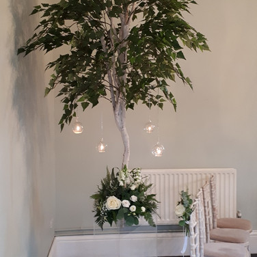 Wedding Birch Trees