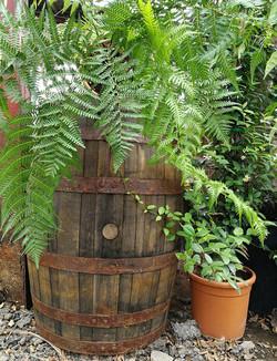 Genuine Whiskey Barrels