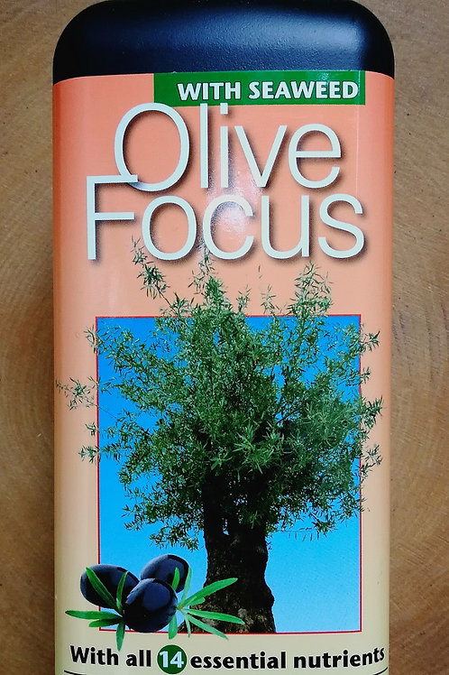 Olive Focus Fertiliser.1Litre