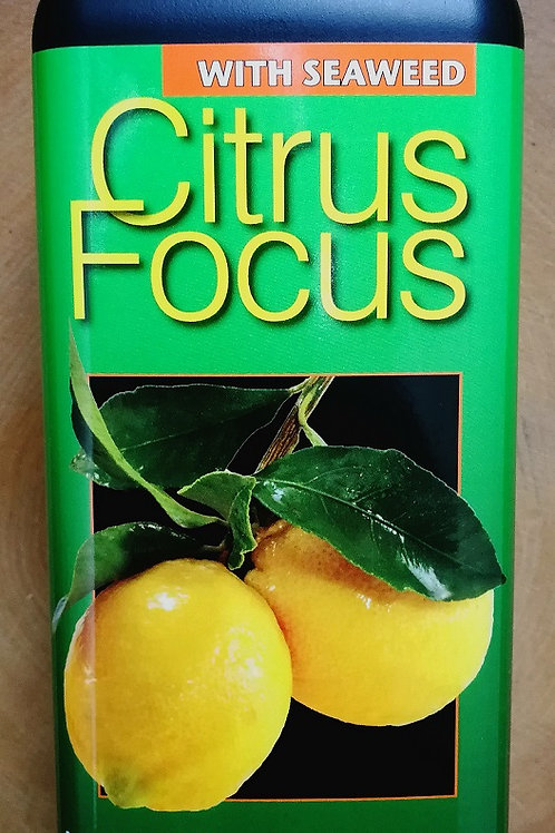 Citrus Focus Fertiliser.