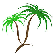 The Palm Tree Company. Hardy palm Trees. Palm Trees for Sale. Trachycarpus Fortunei, Trachycarpus Wagnerianus.