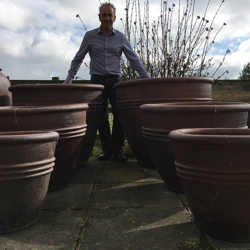 Huge Garden Pots for Sale. Large Rustic Garden Pots  The Palm Tree Company