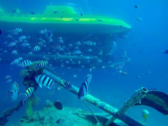 Sinbad Submarine Hurghada
