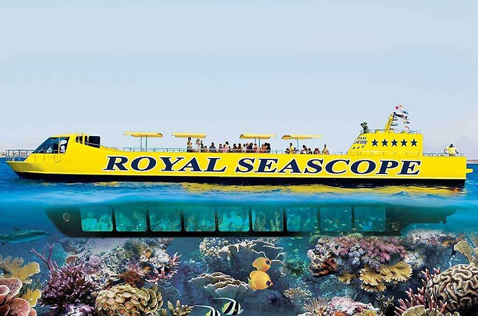 royal-sea-scope (1) (1).jpg