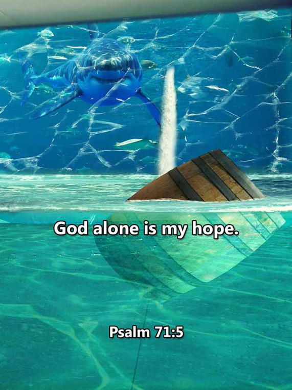 God alone is my hope Psalm 71_5LR.jpg