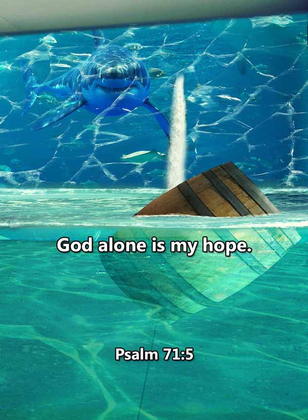 God alone is my hope Psalm 71_5LR.jpg