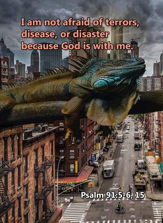 Terrors disease or disaster Psalm 91LR.j