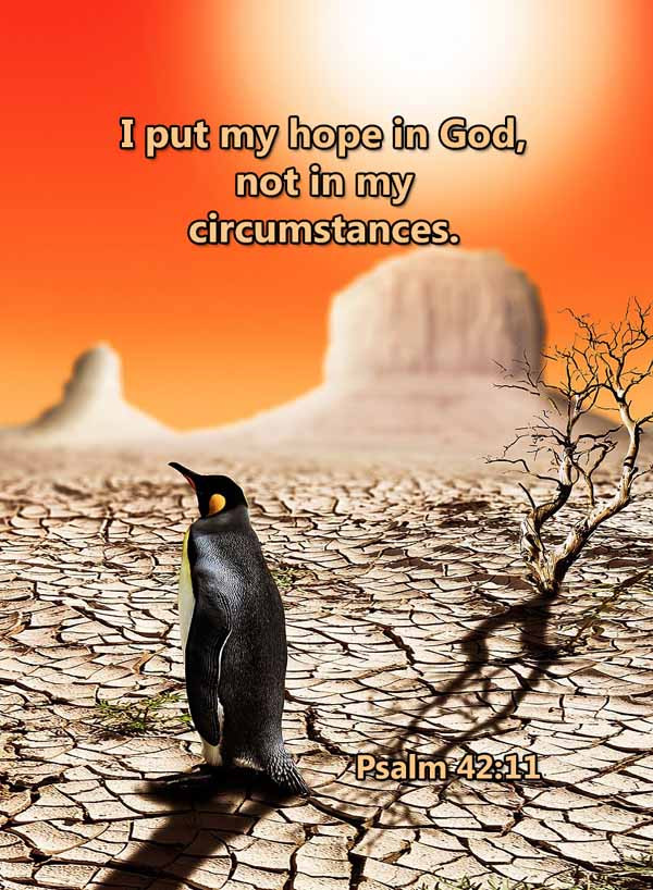 I put my hope in God not circumstances P