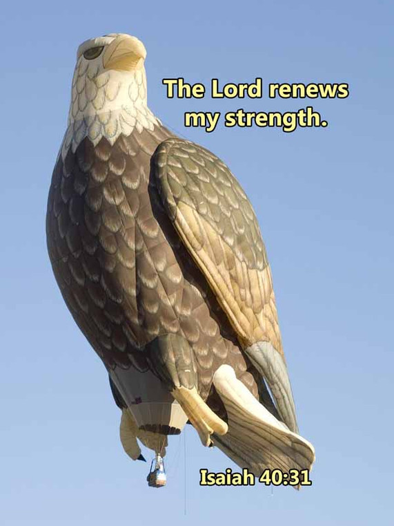 The Lord renews my strength Isaiah 40_31