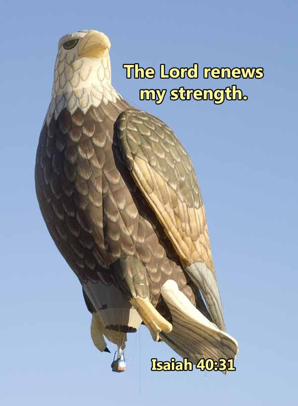 The Lord renews my strength Isaiah 40_31