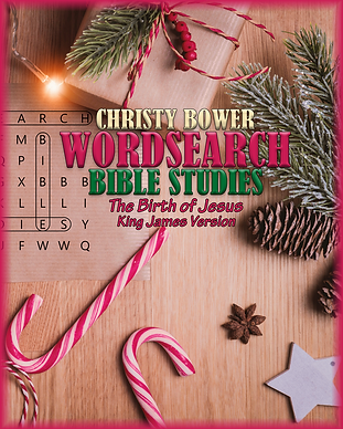 WS Christmas Cover with Border 768x960.p