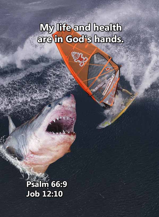 My life and health Psalm 66_9LR.jpg