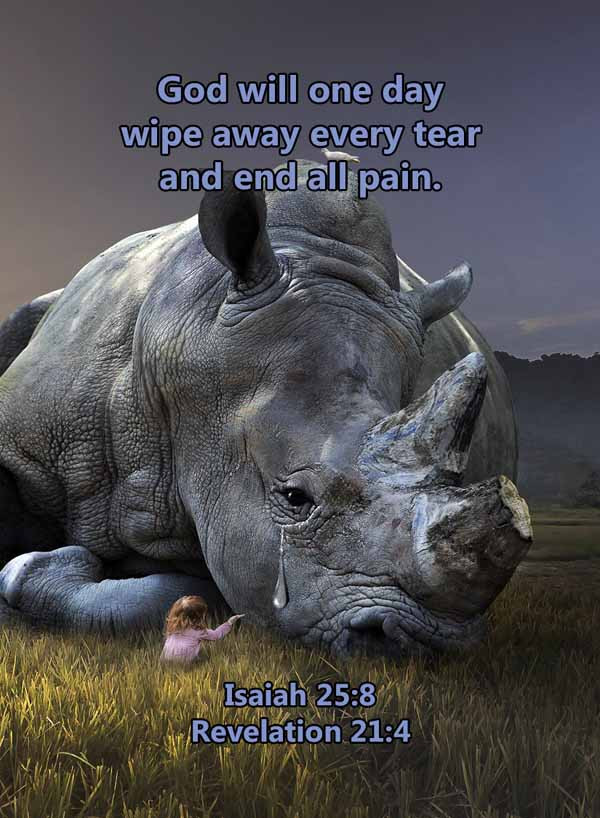God will one day wipe away every tear Is