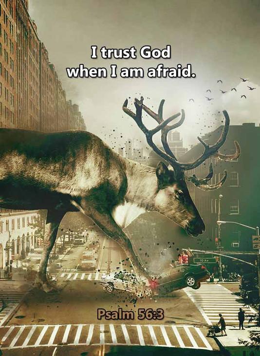 I trust God when I am afraid Psalm 56_3L