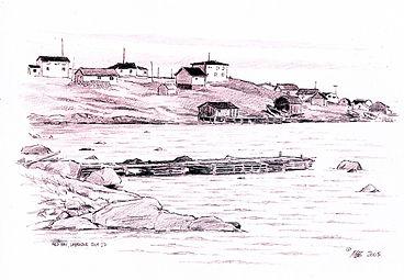 Red Bay Labrador.jpg