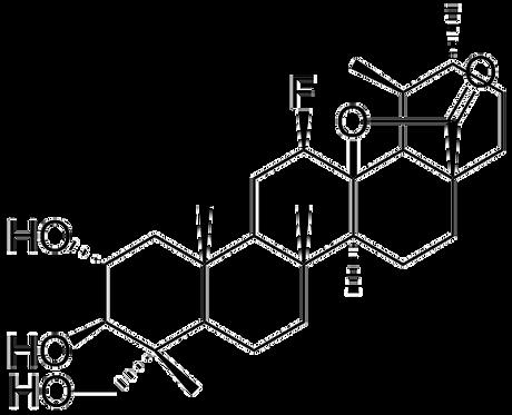 C4PA301