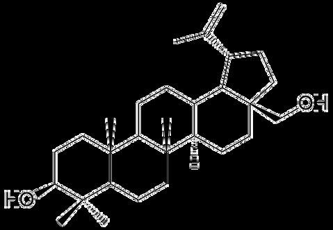 C4PB283; Betulin