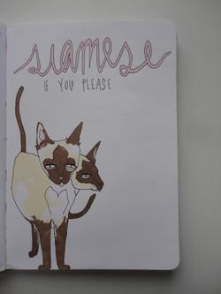 'siamese if you please'