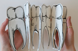 tooth accordion book