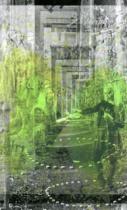 screen-print on 35mm silver gelatin print