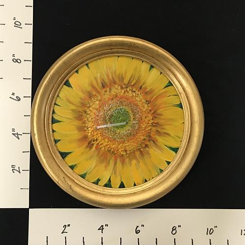 Framed Oil Sunflower