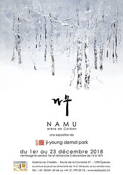 ji young demol park