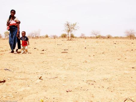 La préservation de l'environnement et la pauvreté en Afrique